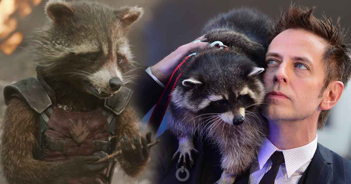 Photo of Guardians of the Galaxy: Real Life Model For Rocket, Oreo The Raccoon Has Died