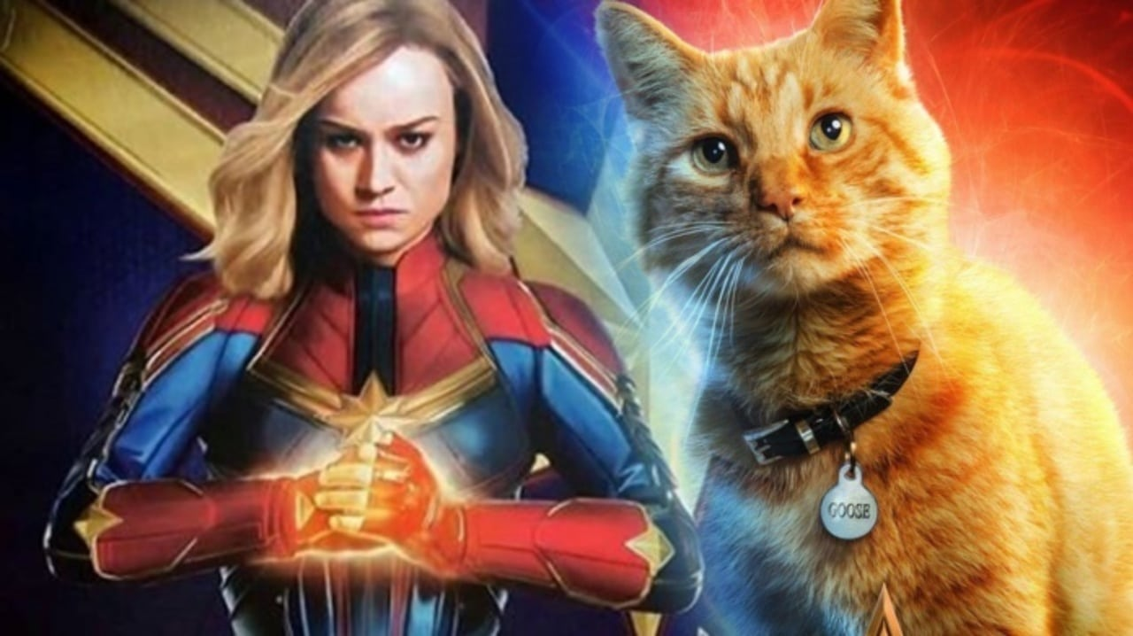 Photo of Captain Marvel Toy Confirms Major Spoiler For Goose The Cat