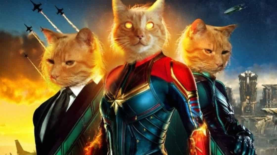 Photo of Captain Marvel – Can Goose The Flerken Cat See The Future?