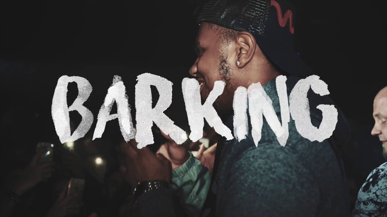Photo of Ramz Barking Mp3 Download Pagalworld in High Definition (HD)