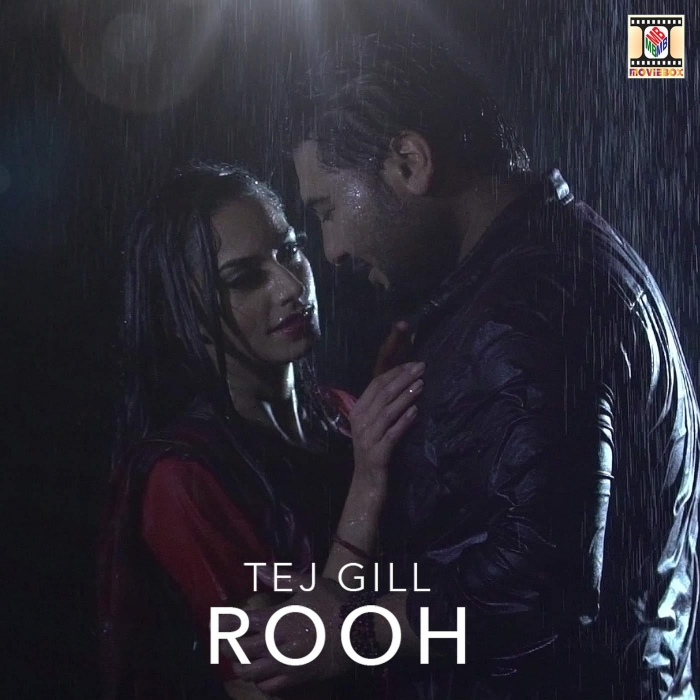 Photo of Rooh Song Download Mr Jatt in High Definition (HD) Audio
