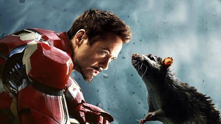 Photo of The Avengers: Endgame Rat May've Appeared Previously in the MCU
