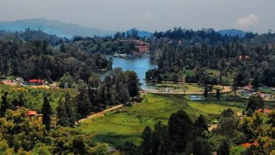 Places to Visit in Kodaikanal