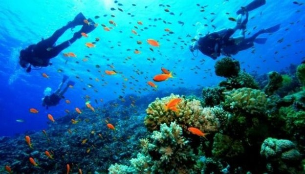 Tourist Places in Andaman And Nicobar Islands