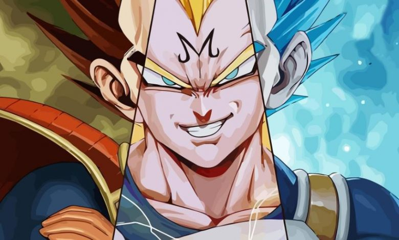 Facts About Dragon Ball Vegeta