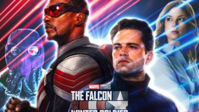 Falcon And The Winter Soldier Trailer Description