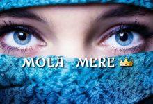 Photo of Mola Mere Mola Dj Song Download | Aditya Yadav Dj Song 2020