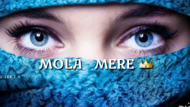 Photo of Mola Mere Mola Dj Song Download | Aditya Yadav Dj Song 2020