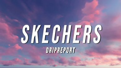 Skechers Song Download Mp3 Pagalworld