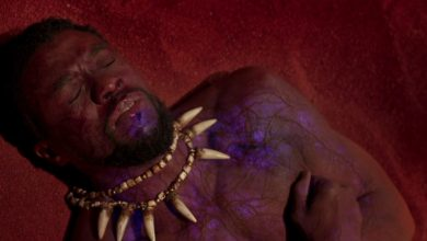 Photo of Black Panther – An Insane Power of the Heart-Shaped Herb Was Revealed in Avengers 2