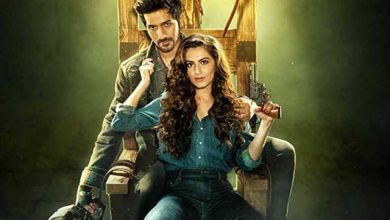 Photo of Yeh Saali Aashiqui Full Movie Download in High Quality