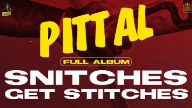 pittal song mp3 download
