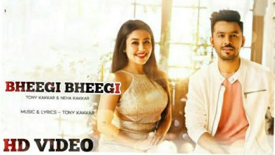 Bheegi Bheegi Neha Kakkar Song