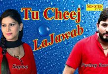 Photo of Tu Cheez Lajawab Mp3 Song Download Pagalworld in 320kbps HD