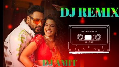 Photo of Genda Phool Dj Song Download Pagalworld in High Quality [HQ]