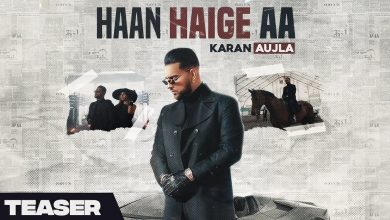 Photo of Haan Haige Aa Lyrics Available For Your Reference