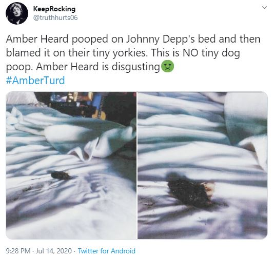 Amber Heard Pooped on Johnny Depp's Bed