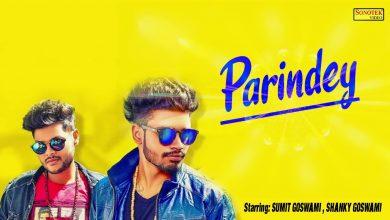 parindey song download mr jatt