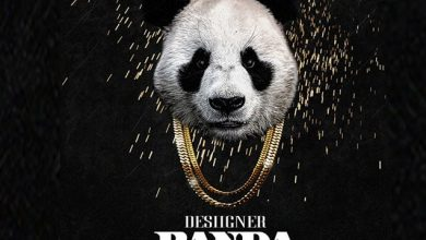 Photo of Panda Song Download Mp3 in High Quality Audio For Free