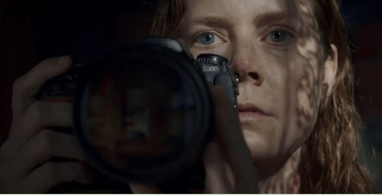 The Woman in the Window Netflix Acquire The Amy Adams Thriller Movie