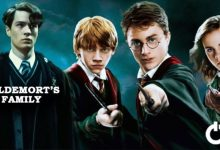 Photo of Harry Potter Characters That Were Excluded From The Movies