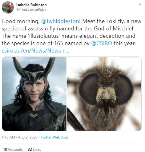 Newly Discovered Fly Species Named After Marvel Characters