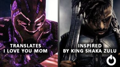 Photo of Fascinating Little Details Spotted in Black Panther Movie