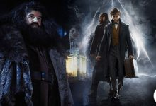 Photo of This Theory Reveals How Hagrid Could Appear In The Fantastic Beasts Series