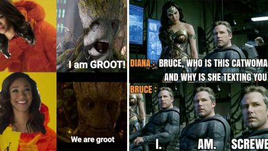 Photo of 20 Best DC Memes For Every Fan