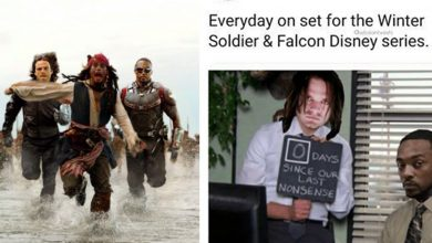 Photo of 20 Best Falcon And The Winter Soldier Memes