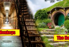 Photo of 20 Crazy And Awesome Pictures From Abandoned Famous Movie Sets