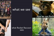Photo of 20 Memes On Rocket Racoon Vs Other Avengers