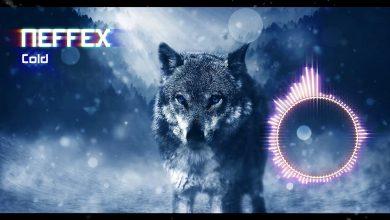 neffex cold mp3 download