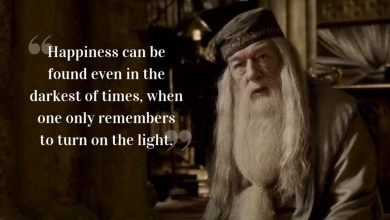Photo of 10 Amazing Harry Potter Quotes That Changed Our Lives Forever