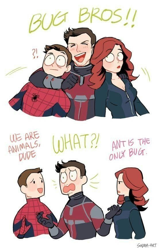 Funny Memes on Spider-Man's Life