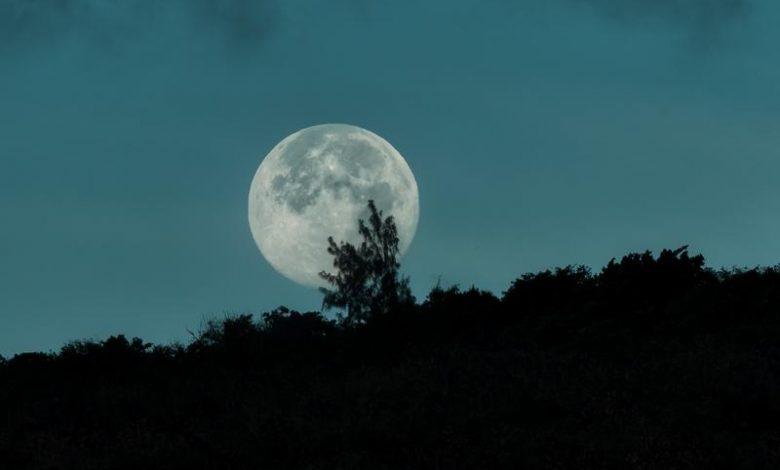 moonlight harnoor mp3 download