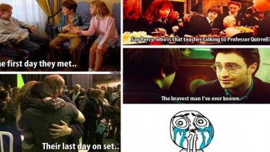 Harry Potter Made Fans Cry