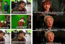 Things Harry Potter Cast Said About Each Other
