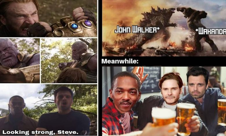 Funniest Falcon And The Winter Soldier Memes