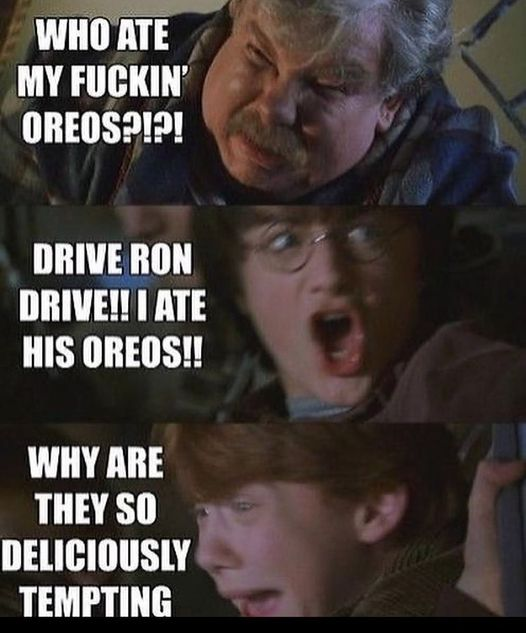 when-fans-roasted-their-favorite-harry-potter-characters