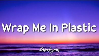 Wrap Me In Plastic Song Download