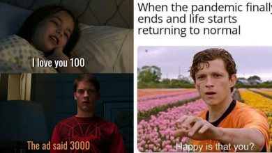 funny-spider-man-universe-memes