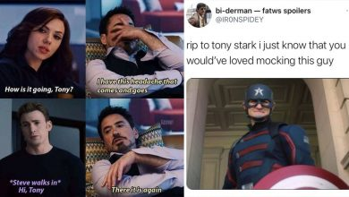 how Tony Stark Trolled Other Avengers