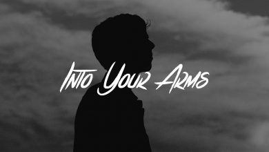 Into Your Arms Song Download