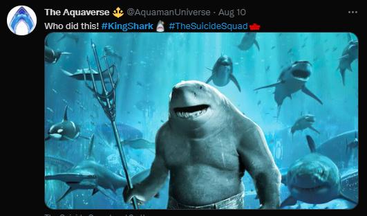 The Shark World