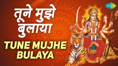 Tune Mujhe Bulaya Sherawaliye Mp3 Pagalworld